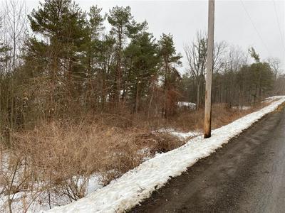 6600 S OLD BALD HILL RD, Canadice, NY 14560 - Photo 2