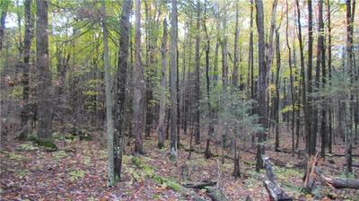 000 BEARTOWN ROAD, Croghan, NY 13327 - Photo 2
