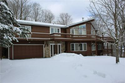 6625 THISTLE RD, ELLICOTTVILLE, NY 14731 - Photo 1