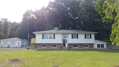 9391 POTTER HILL RD, New Albion, NY 14719 - Photo 1