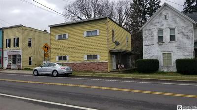 47 W MAIN ST, Carroll, NY 14738 - Photo 1