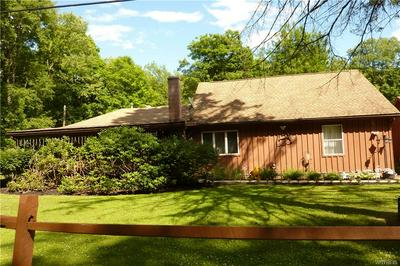 3798 HEDDEN HOLLOW RD, Hinsdale, NY 14727 - Photo 2