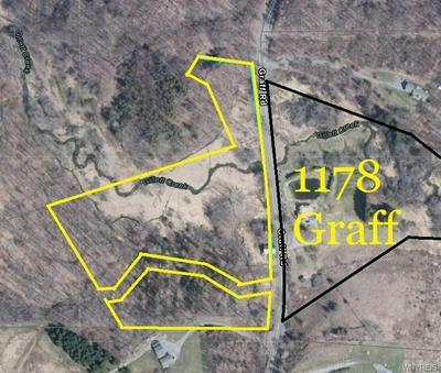 1178 GRAFF RD, Attica, NY 14011 - Photo 2