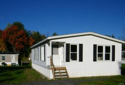 29 MCCOY RD, Colesville, NY 13787 - Photo 1