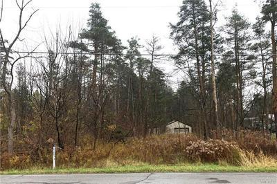 VL IRISH RD, Colden, NY 14033 - Photo 1