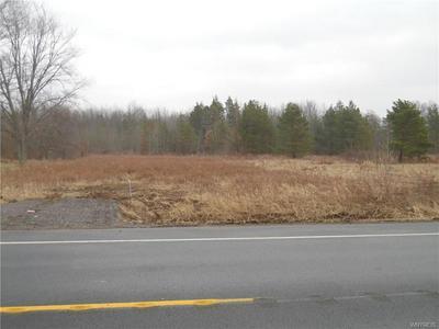 VL CREEK ROAD, Lewiston, NY 14092 - Photo 1