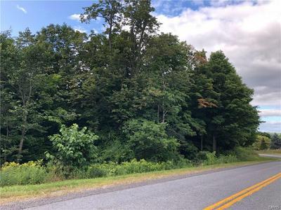 0 N HARBOR ROAD, Adams, NY 13606 - Photo 1