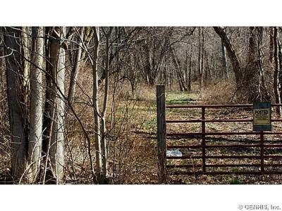 0 W PORT BAY ROAD, Huron, NY 14590 - Photo 1