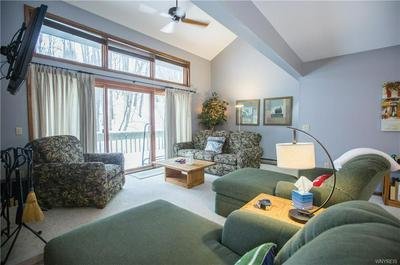 40 ALPINE MDWS, ELLICOTTVILLE, NY 14731 - Photo 2