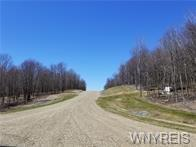 3 TRAIL HEIGHTS, Ellicottville, NY 14731 - Photo 1