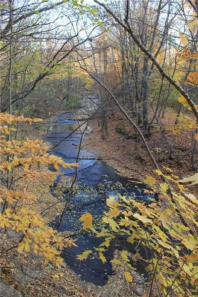 531 WHEELER HILL RD, Carroll, NY 14738 - Photo 2