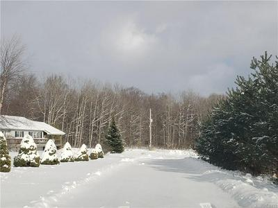 185 BUTTERFIELD RD, Lisle, NY 13835 - Photo 2