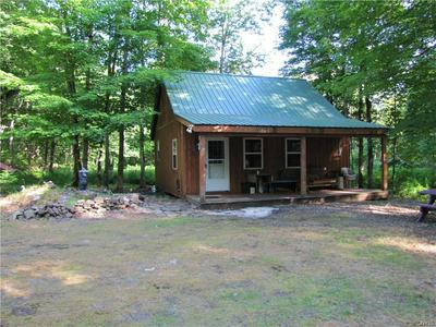 25 BEAVER CREEK RD, REDFIELD, NY 13437 - Photo 1