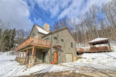 6709 UPPER RD, ELLICOTTVILLE, NY 14731 - Photo 2