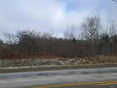 V/L ELLICOTTVILLE-MAPLES ROAD, Mansfield, NY 14755 - Photo 1