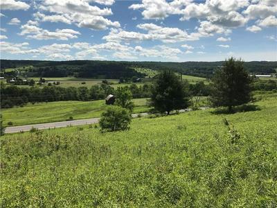0 STATE RT 26, Cincinnatus, NY 13040 - Photo 1