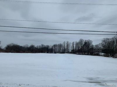 0 W. LAKE RD., PERRY, NY 14530 - Photo 1