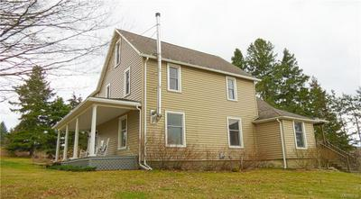 7273 JERSEY HOLLOW RD, LITTLE VALLEY, NY 14755 - Photo 2