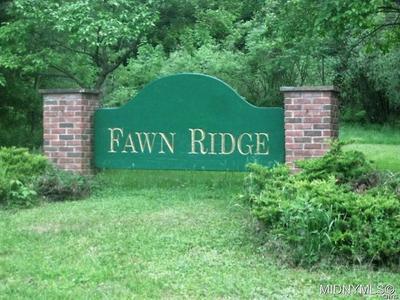 9 FAWN RIDGE DRIVE, Western, NY 13486 - Photo 1