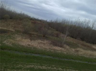 0 PETERSMITH ROAD, Kendall, NY 14476 - Photo 1