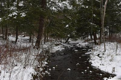 0 STATE LINE & ROUSE HILL, French Creek, NY 14724 - Photo 1