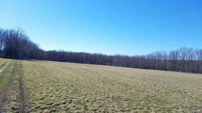 885 COUNTY ROUTE 98, REXVILLE, NY 14877 - Photo 2