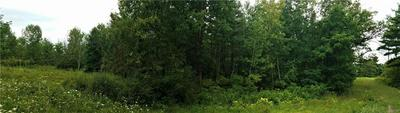 0 SATTERLY HILL, Hector, NY 14818 - Photo 2