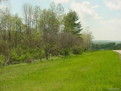 0 STATE ROUTE 243, Rushford, NY 14777 - Photo 1