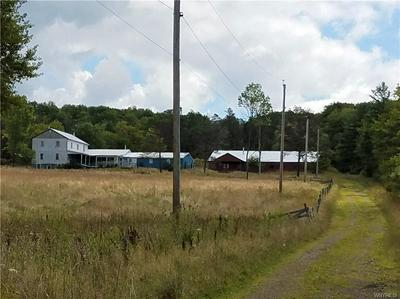 9002 MIDDLE RD, Allen, NY 14709 - Photo 1