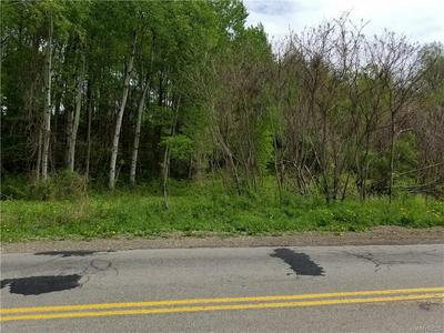 7198 TOAD HOLLOW RD, Little Valley, NY 14755 - Photo 2