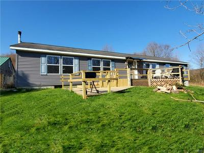 1709 CHAPIN RD, Georgetown, NY 13072 - Photo 1