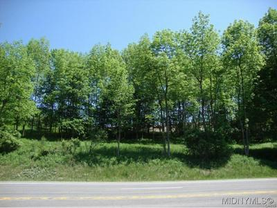 0 US RT 20 NS, Bridgewater, NY 13313 - Photo 2