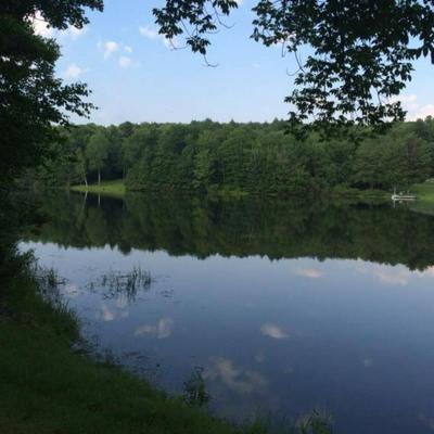 8 SPARROWHAWK LAKE, Maryland, NY 12155 - Photo 2