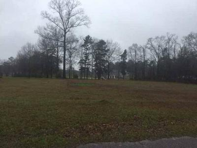 LOT # 5 PLANTATION TRACE, Jackson, AL 36545 - Photo 1