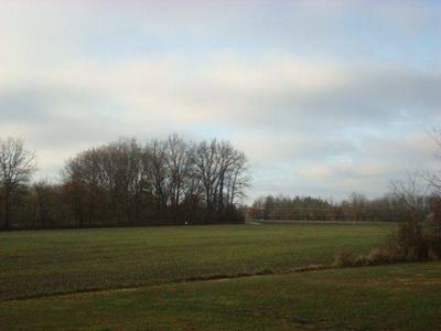 940 W NORTH AVE, OLNEY, IL 62450 - Photo 1
