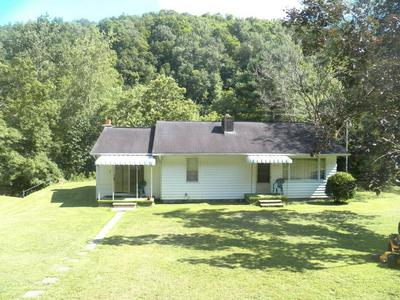 12313 ELK RIVER RD, DUCK, WV 25063 - Photo 1