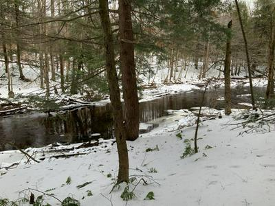 199 STEELHEAD LN, Williamstown, NY 13493 - Photo 2