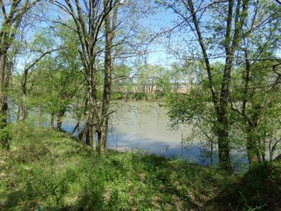 9100 PRENTISS RD, Beaver Dam, KY 42320 - Photo 1