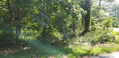 119 ALBERTA ST, Jarvisburg, NC 27947 - Photo 2