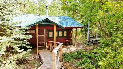 901 PANTHER AVE, Cloudcroft, NM 88317 - Photo 1