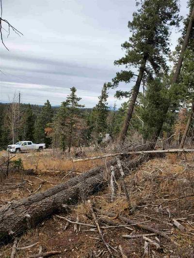 1056 BLANCA VIS, Cloudcroft, NM 88317 - Photo 1