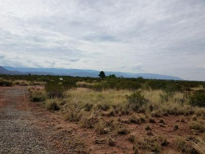 RATTLESNAKE RD, Tularosa, NM 88352 - Photo 2