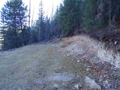 50 ELY LN, Cloudcroft, NM 88317 - Photo 2