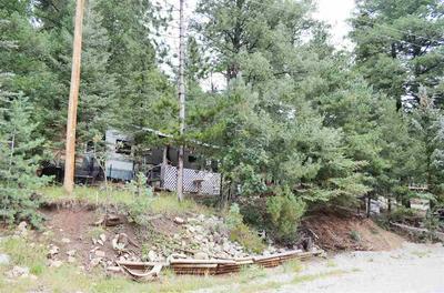 51 WILDWOOD, Cloudcroft, NM 88317 - Photo 2