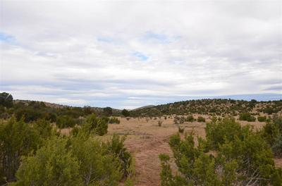 WEBER YOUNG RD, Pinon, NM 88344 - Photo 1