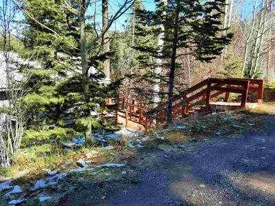 511 BALSAM LN, Cloudcroft, NM 88317 - Photo 2
