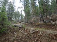 69 GOLD NUGGETT ALY, Cloudcroft, NM 88317 - Photo 1