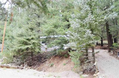 51 WILDWOOD, Cloudcroft, NM 88317 - Photo 1