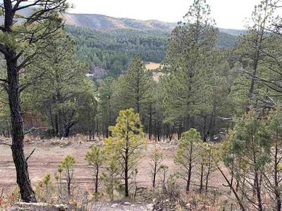 GROMEX DR, Mayhill, NM 88339 - Photo 2