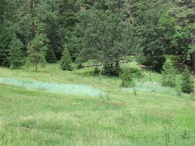 LOT # 7 BILLIE JEAN WAY, Cloudcroft, NM 88317 - Photo 2